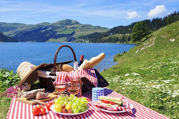 Cum organizezi un picnic reuşit, pas cu pas