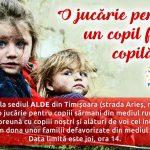 """ALDE Timiș demarează campania """"O jucărie pentru un copil fără copilărie"""""""