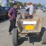 """""""Șasă cai frumoș"""", cu tot cu căruțe, veniți din județul Sălaj și opriți pe străzile din Timișoara"""