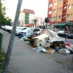 Licitaţie greoaie pentru curățenia stradală din Timișoara. Doar două firme sunt interesate