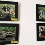 """Expoziţie itinerantă de artă fotografică: """"COMORILE  ROMÂNIEI """", la Centrul Multifuncțional Bastion"""