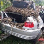 O persoană și-a pierdut viața și trei oameni au fost răniți în urma unui accident