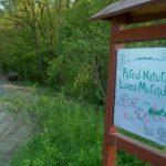 Ziua Parcului Natural Lunca Mureşului va fi marcată la finele săptămânii viitoare