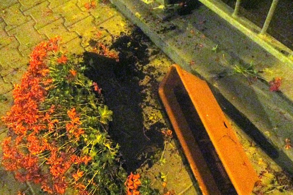 Ce amendă a primit un oltean care a lovit cu picioarele coșurile de gunoi și jardinierele de pe Podul Michelangelo