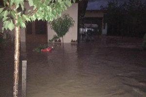Peste o sută de gospodării din Timiș sub ape