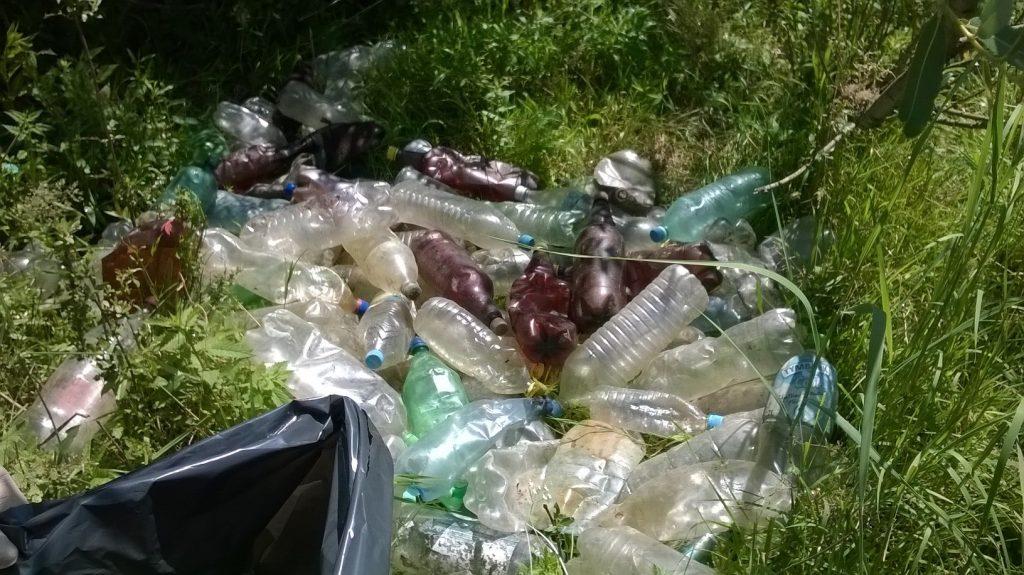 Acțiune de ecologizare într-o comună din Timiș