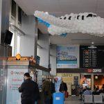Anul 2019 a adus o creștere a traficului aerian, noi destinații și demararea unor lucrări de modernizare pe Aeroportul International Timișoara