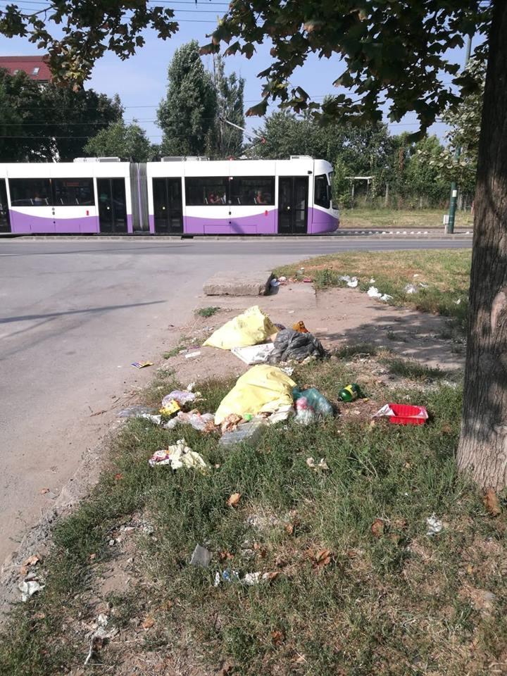 Nesimţirea se plăteşte! Peste 1.500 de amenzi aplicate de la începutul anului pentru aruncarea deşeurilor
