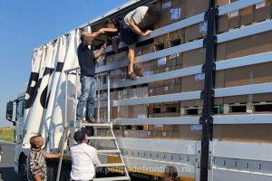 42 de migranţi, prinşi de poliţiştii de frontieră când încercau să iasă ilegal din ţară pe la Nădlac