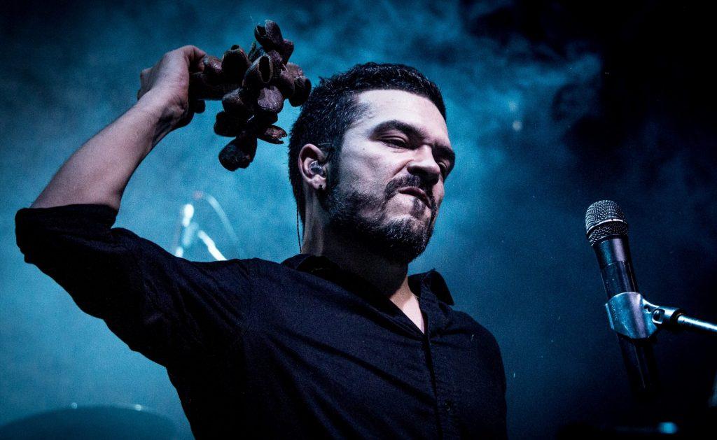 Adrian Despot, Cezar Popescu și Țapinarii, în concert la Timișoara