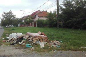 Acțiune de ecologizare la Giroc! Voluntarii, chemați să dea o mână de ajutor