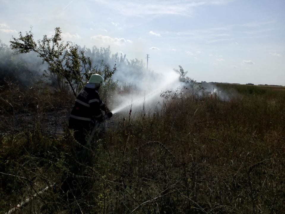Nu mai daţi foc la mirişti! ISU a înregistrat 30 de incendii de vegetație uscată în ultimele 3 zile