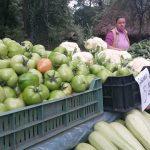 Festivalul Culinar Multietnic și Roadele Toamnei, în weekend la Muzeul Satului