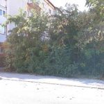 200 de proprietari de terenuri care nu le-au igienizat și cosit, amendaţi de Poliţia Locală