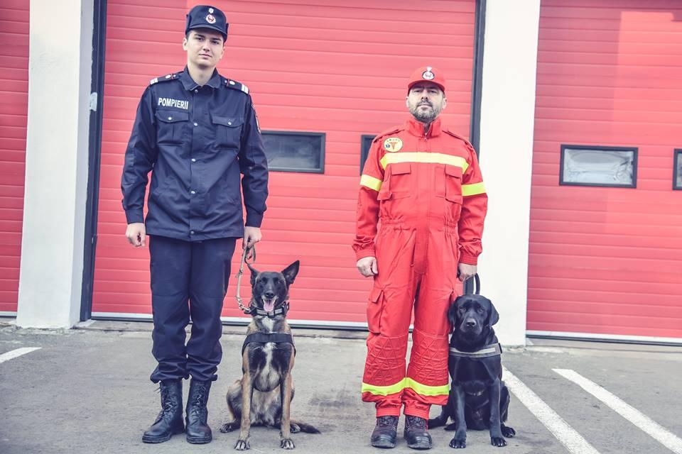 Patrupezii Astor şi Sema, noii colegi ai pompierilor timişeni