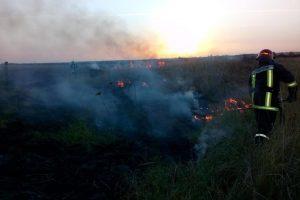 Pompierii atrag atenţia: nu mai daţi foc la mirişti! ISU a stins 20 de incendii în 24 de ore