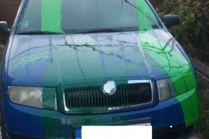 Cum s-au răzbunat trei tineri pe un polițist din judeţul Arad