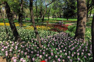Viceprimarul Dan Diaconu anunţă o primăvară spectaculoasă în Parcul Justiţiei