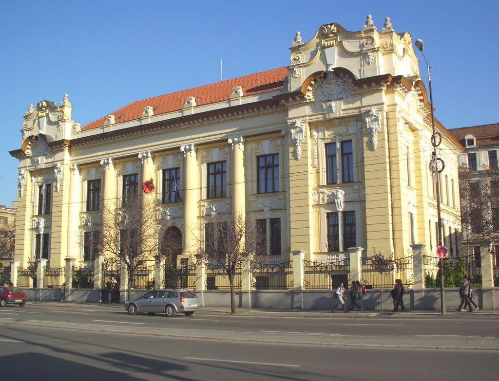 Conferințe, expoziții și activități de educație financiară. BNR sărbătorește Centenarul la Timișoara