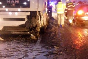 Accidente rutiere și copaci căzuți. Ninsorile din ultimele ore au produs efecte în Timiș