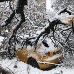 E dezastru în Timiş din cauza zăpezii. ISU a avut 58 de intervenţii în doar două ore