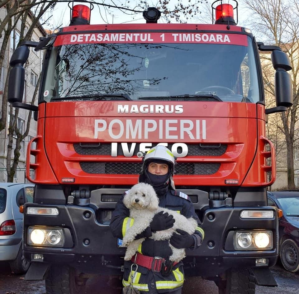 """O """"bijuterie"""" de căţel şi-a salvat stăpânii când locuinţa le-a luat foc"""