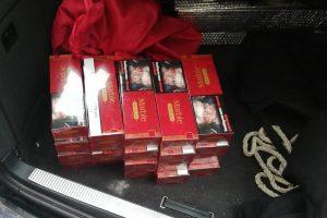 Jandarmii au confiscat peste 400 de pachete de ţigări