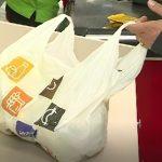 România interzice pungile din plastic cu mâner