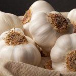Agricultorii se pot înscrie în programul de susținere a producției de usturoi