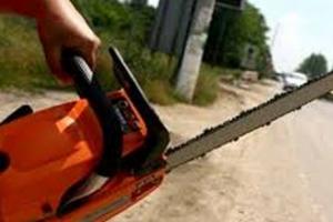 Poliţist acuzat de neglijenţă în cazul timişeanului decapitat cu drujba