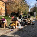 Nesimţirea se plăteşte! Firme amendate de Poliţia Locală pentru că au depozitat deșeuri în buricul târgului