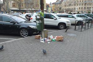 """""""Timişoara curată"""" a făcut peste 200 de """"victime"""""""
