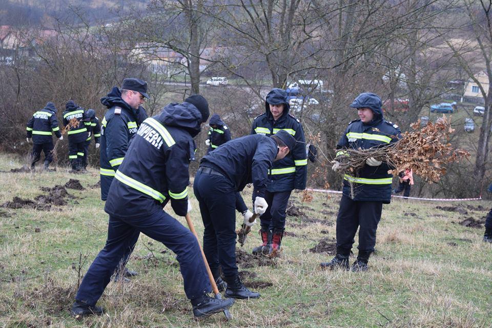 Foto. Ce fac salvatorii în timpul liber? Plantează pomi!