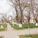 Curățenie de primăvară la Șandra