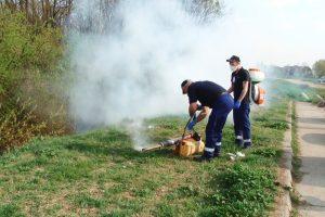 De luni, reîncep stropirile împotriva muştelor şi a ţânţarilor