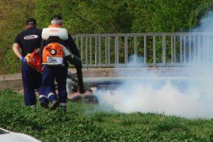 De săptămâna viitoare va începe acțiunea de dezinsecție și deratizare la Timișoara