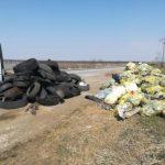 Parcările din județul Timiș, invadate de gunoaie. Ce măsuri ia CJ