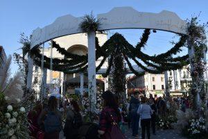 Primarul Nicolae Robu anunță când va avea loc festivalul Timfloralis