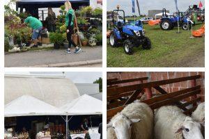 Cel mai mare târg de agricultură din vestul țării și-a deschis porțile