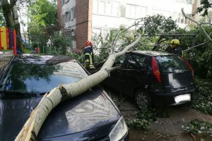 Furtuna de noaptea trecută a făcut ravagii în Timișoara