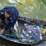 Doi sârbi, prinşi de Poliţia de Frontieră când pescuiau în apele teritoriale românești