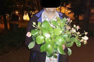 Trandafirii culeşi din Parcul Rozelor l-au costat 2.000 de lei pe un timişorean