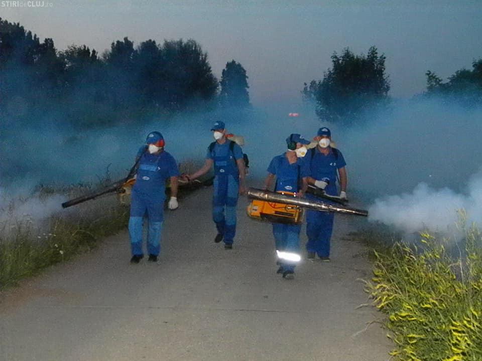 O nouă acțiune de dezinsecție în comuna Giroc