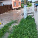 Curţi şi subsoluri inundate în Timiş