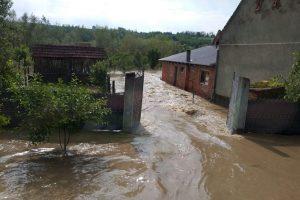 Case şi gospodării sub ape după ce Bega s-a revărsat. Pompierii au evacuat oameni şi animale