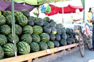 Locurile din Timişoara unde se vor vinde pepeni. Comercianţii pot depune cereri pentru vânzare