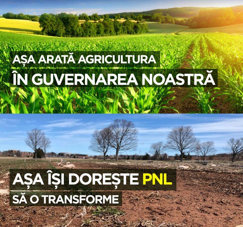 Gabriel Toie, ALDE Timiș: ALO, PNL, de PACE ați auzit? Sau doar la război vă e gândul? Asta ne așteaptă dacă veniți voi la guvernare?