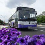 Cum circulă mijloacele de transport de Paşte şi unde găsiţi bilete