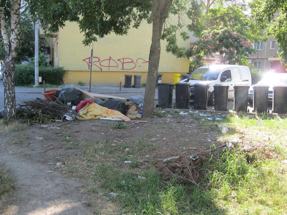 Ce probleme au găsit poliţiştii locali în cartierele Blașcovici, Mehala și Ronaț