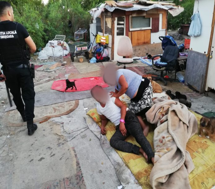 Cuib de boschetari, desfiinţat de Poliţia Locală